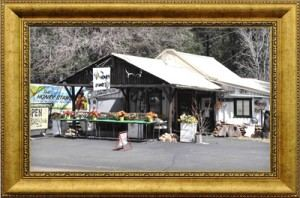Early The Honey Stand Store Front